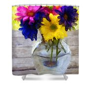 Daisy Crazy Revisited Shower Curtain