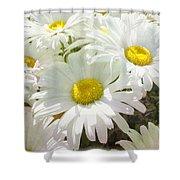 Daisy Summer Garden Shower Curtain