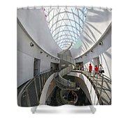 Dali Stairs Shower Curtain