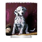 Dalmatian Puppy With Baseball Shower Curtain