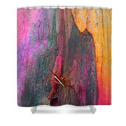Dance For The Earth Shower Curtain