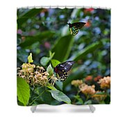 Dance Of The Butterflies Shower Curtain