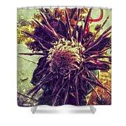 Dances Of Sun  Shower Curtain