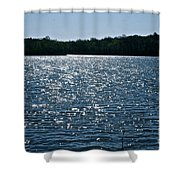 Dancing Diamonds Shower Curtain