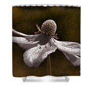Dancing In The Breeze Shower Curtain
