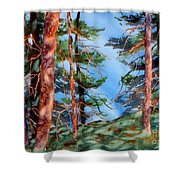 Dancing Light And Mossy Field Shower Curtain