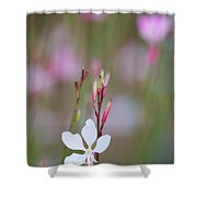 Dancing Whirling Butterflies Shower Curtain