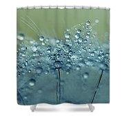 Dandelion Drops In Blue Shower Curtain