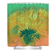 Dandilion Colorized IIi Shower Curtain