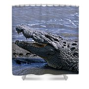 Danger On The Mara River Shower Curtain