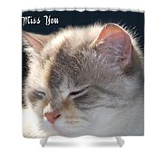 Daphne Cat Miss You Shower Curtain