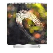 Dappled Web Of Deceit Shower Curtain