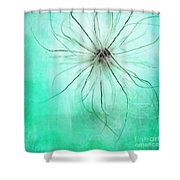 Dar La Luz Shower Curtain by Priska Wettstein