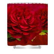 Dark Pink Rose Shower Curtain