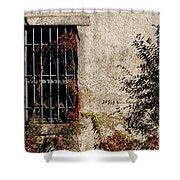 Darkness Beyond The Walls Shower Curtain