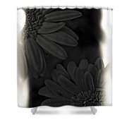 Darkness To Live Shower Curtain
