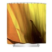 Datura Transparency  Shower Curtain