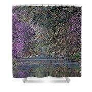 Davis Arboretum Creek Shower Curtain