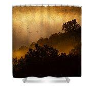 Dawn Flight Shower Curtain