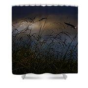 Dawn Light Shower Curtain