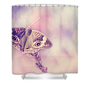 Day Dream Shower Curtain by Amy Tyler