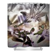 Day Lilies - Abstract Shower Curtain