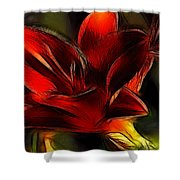 Day Lily Fractal Shower Curtain