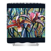 Daylily Stix Shower Curtain by Kathy Braud