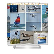 Daytona Beach Collection 2011 Shower Curtain