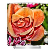 Dazzling Rose Shower Curtain