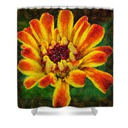 Dazzling Zinnia Shower Curtain
