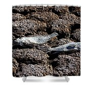 Salton Sea Dead Tilapia Shower Curtain