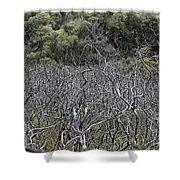 Dead Tree Garden Shower Curtain