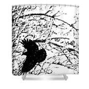 December Raven Shower Curtain