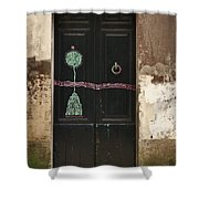 Decorated Door Shower Curtain