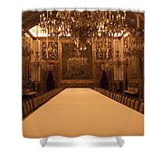 Decorative Dining Shower Curtain