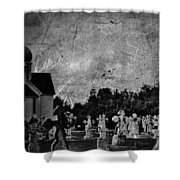 Deep Carved Memories  Shower Curtain