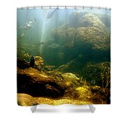 Deep Down  Shower Curtain