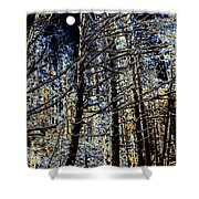 Deep In The Moonlit Forest Shower Curtain
