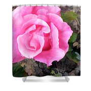 Deep Pink Watercolor Rose Blossom Shower Curtain