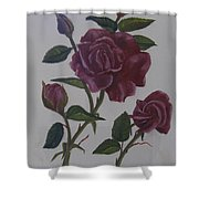 Deep Red Roses Shower Curtain