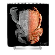 Deep Water Crab X-ray And Optical Image Shower Curtain