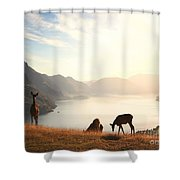 Deer At Sunset Shower Curtain by Pixel  Chimp