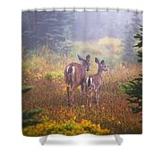 Deer In The Fog In Paradise Park In Mt Shower Curtain
