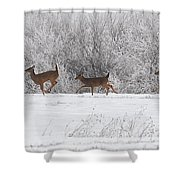 Deer Parade Shower Curtain