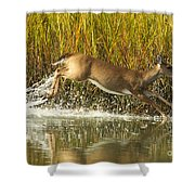 Deer Running Through The Salt Marsh Shower Curtain