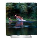 Deer Splash Shower Curtain