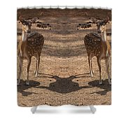 Deer Symmetry  Shower Curtain