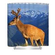 Deer With Antlers, Mountain Range In Shower Curtain
