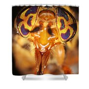 Deerfly Shower Curtain